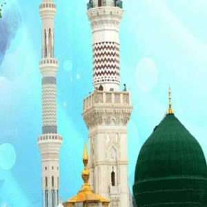 com.gau.go.launcherex.theme.aminb.hazratemohammad0